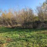 Predané Predaj pozemkov určených na výstavbu – zmiešana zóna, nedaleko centra Dunajskej stredy, 38.463m2, za m2 35€-8