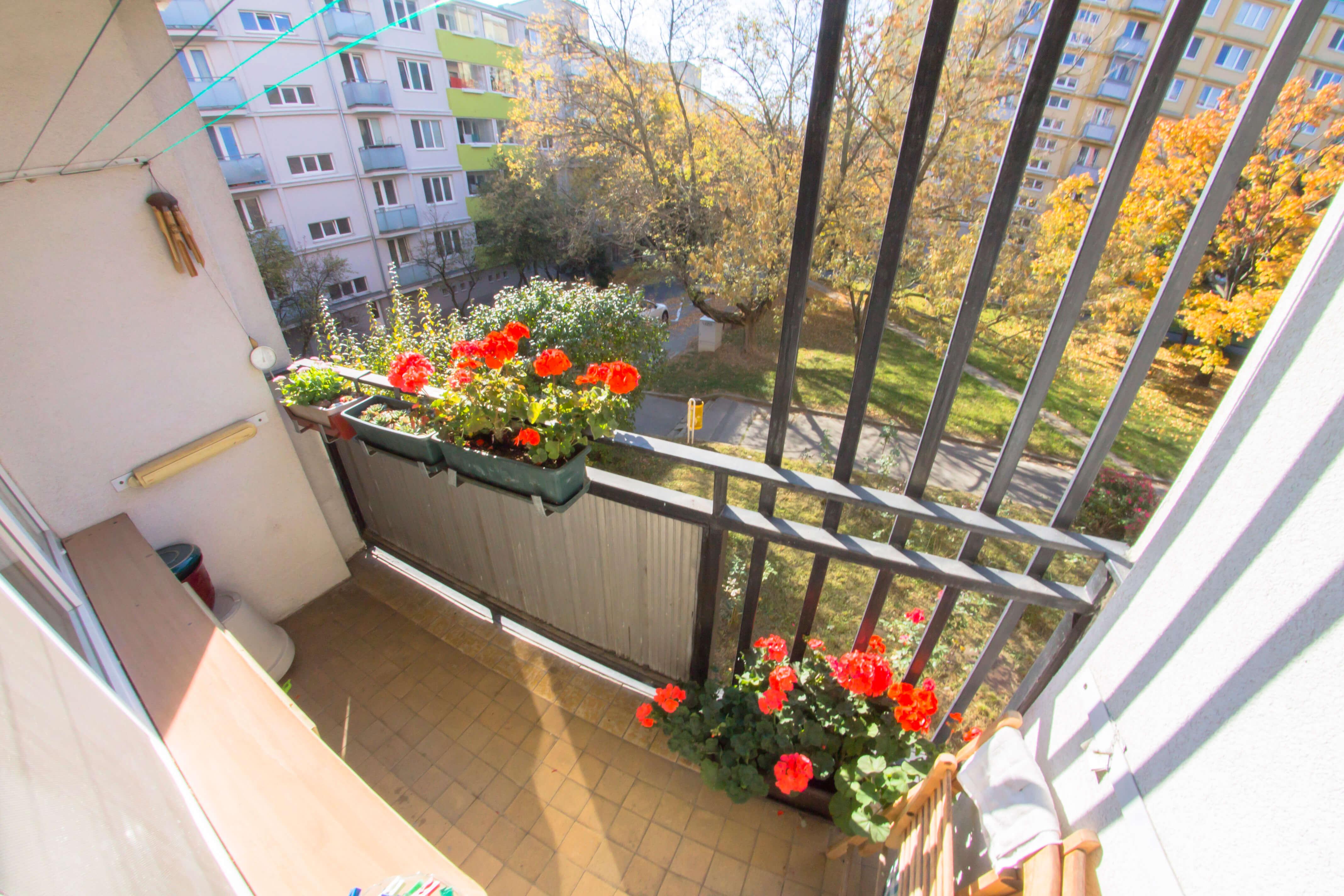 Predané: 3 izbový byt na Piešťanskej ulici-11