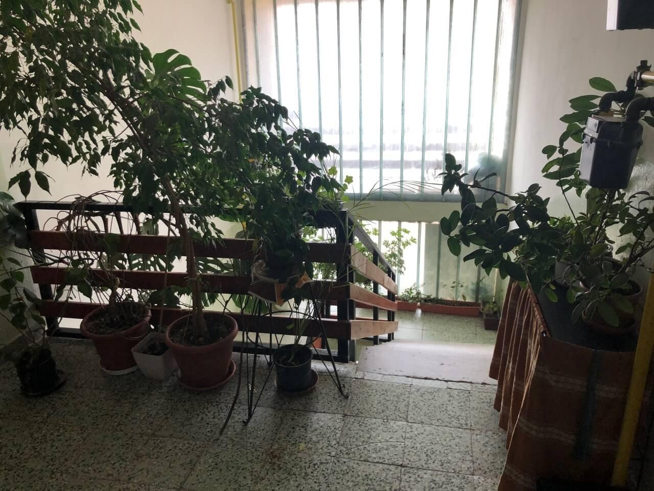 Predaný: Exkluzívne na predaj 3 izb. byt, 81,7m2, balkón 5 m2, pivnica 6m2, garáž, Dunajská Lužná, ulica Brezová-40