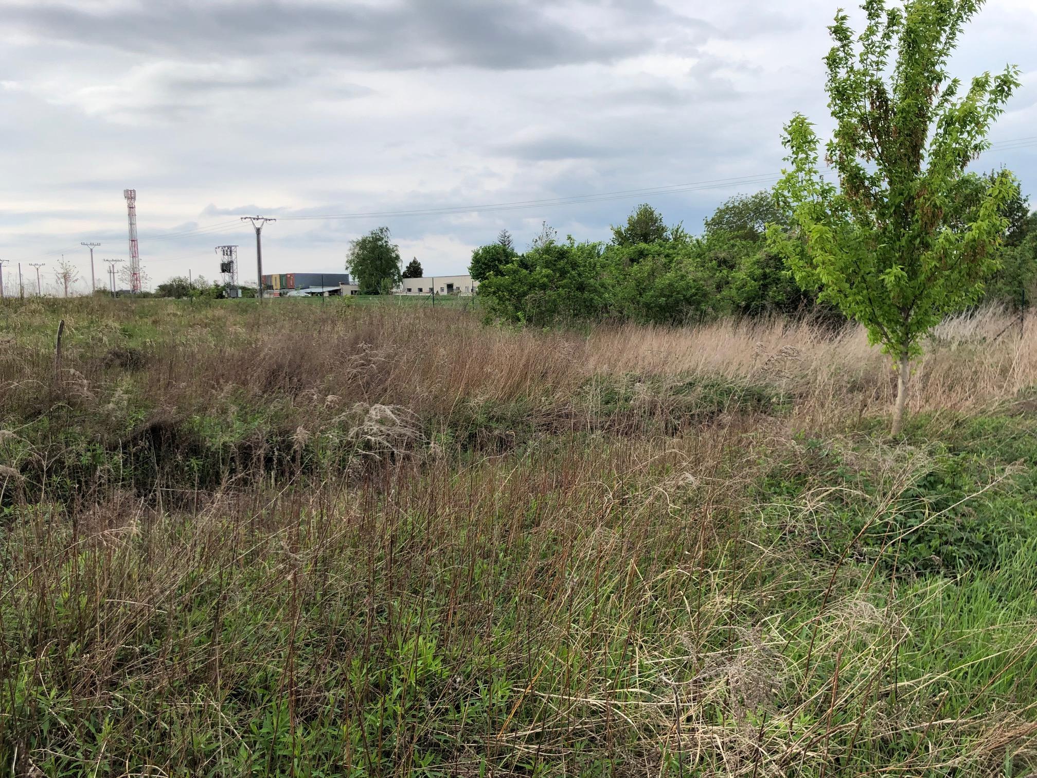 Predané: Pozemok pre výstavbu RD, Čunovo, Dolné kostolné polia, 1000m2-0