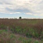 Predané: Pozemok pre výstavbu RD, Čunovo, Dolné kostolné polia, 1000m2-7