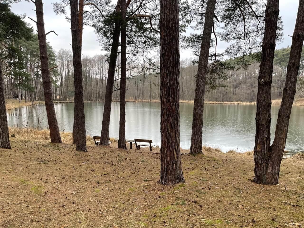 Predané: Rybník, orná pôda, trvalé trávnaté porasty spolu 9541,9 m2, Tančiboky, pri Studienke, za Malackami-0