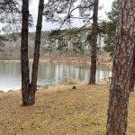 Predané: Rybník, orná pôda, trvalé trávnaté porasty spolu 9541,9 m2, Tančiboky, pri Studienke, za Malackami-1