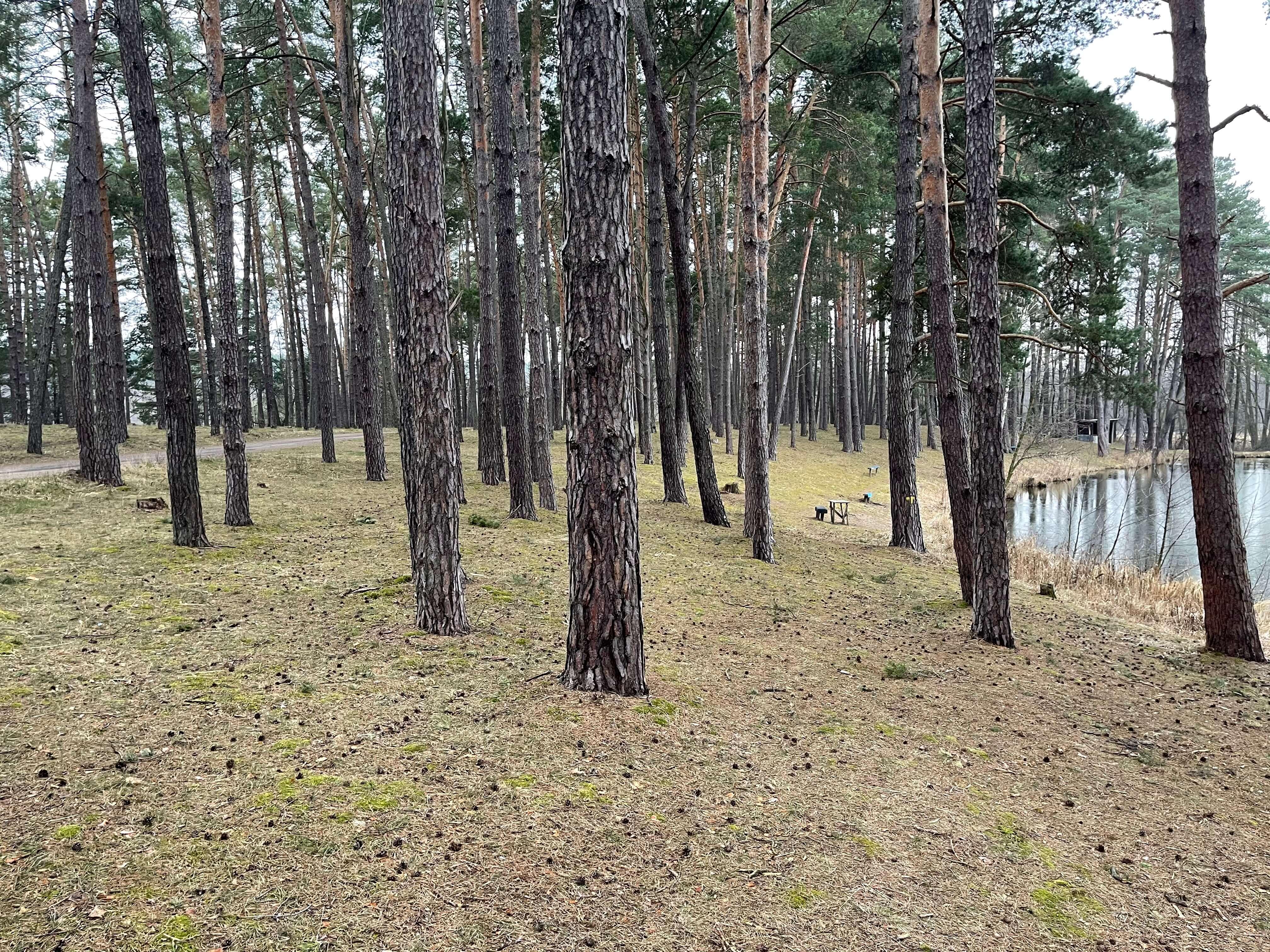 Predané: Rybník, orná pôda, trvalé trávnaté porasty spolu 9541,9 m2, Tančiboky, pri Studienke, za Malackami-2