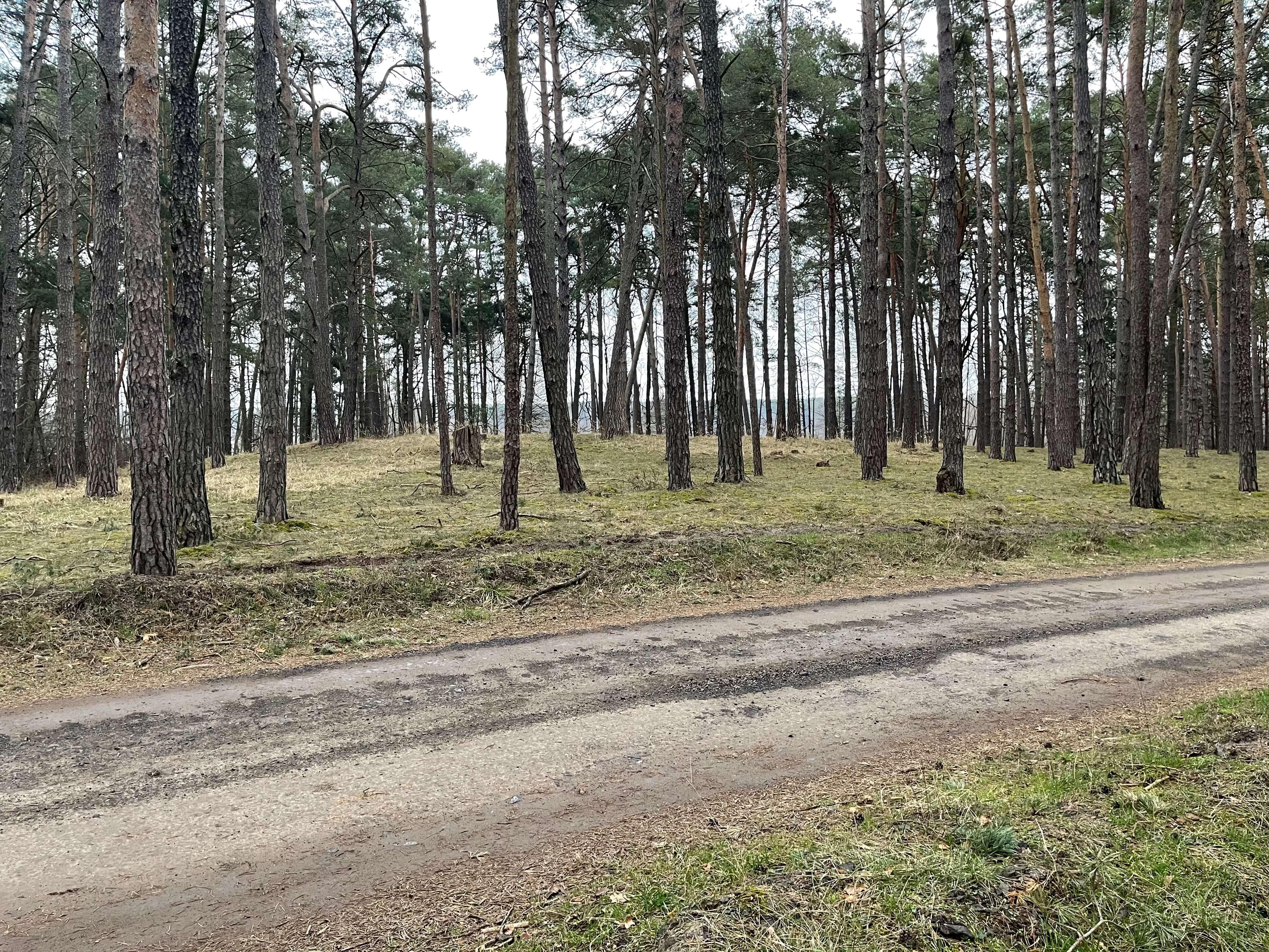 Predané: Rybník, orná pôda, trvalé trávnaté porasty spolu 9541,9 m2, Tančiboky, pri Studienke, za Malackami-5